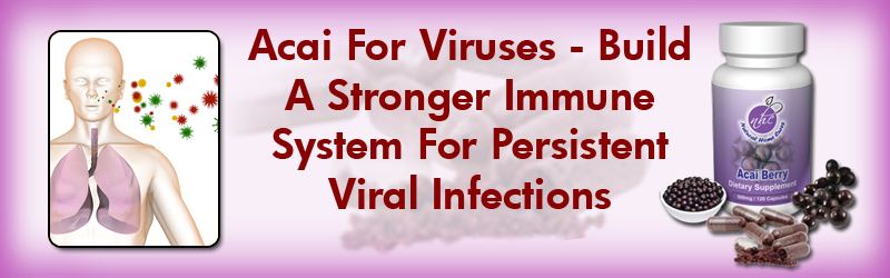 Natural Home Cures Acai Berry For Viruses Build A Stronger Immune System Against Infections