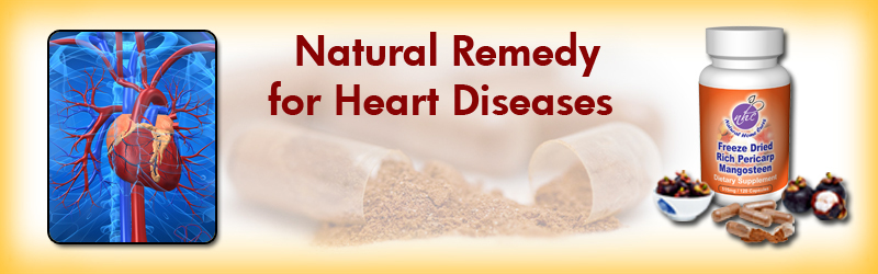 Natural Home Cures Freeze Dried Rich Pericarp Mangosteen For Heart Disease